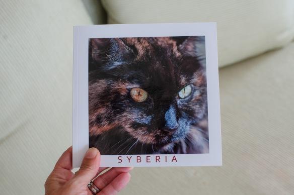 Syberia-1