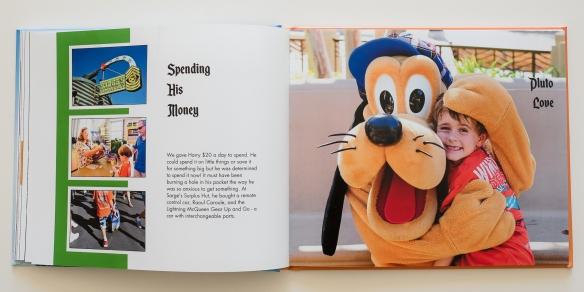 Disneyland 2012-15
