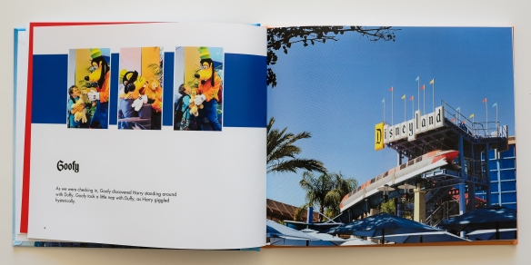 Disneyland 2012-3