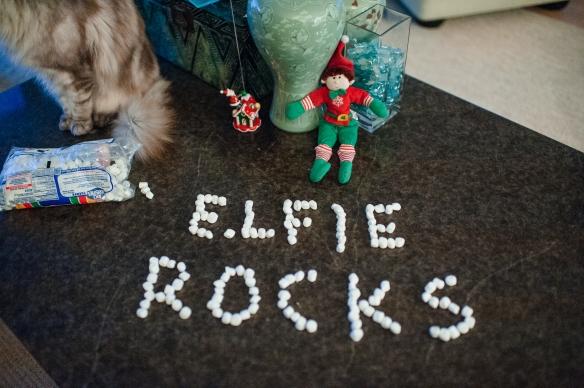 Elf 2013-9